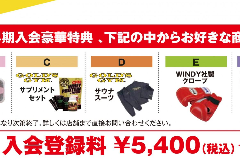 campaign_2016_mini