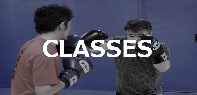 MASTERJAPAN CLASSES